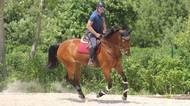 Příhoda se stal jezdcem roku ve všestrannosti a pojede na olympiádu. Vyhrál i jeho Ferreolus